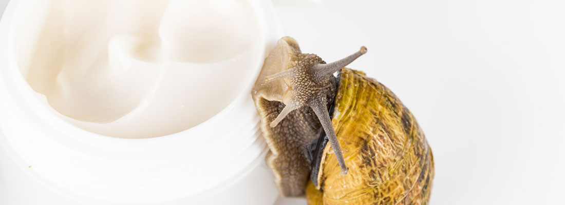 Utiliser la crème à base de bave d'escargot
